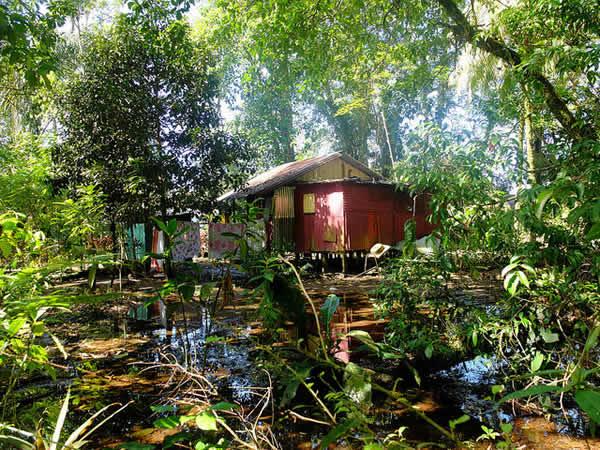 Parc National Tortugero